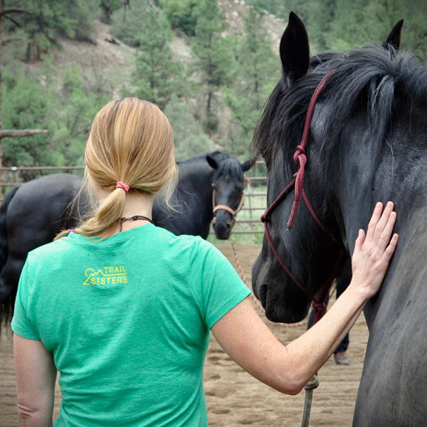Shamanic Journeying and Equine Guided Coaching retreat in Southwest